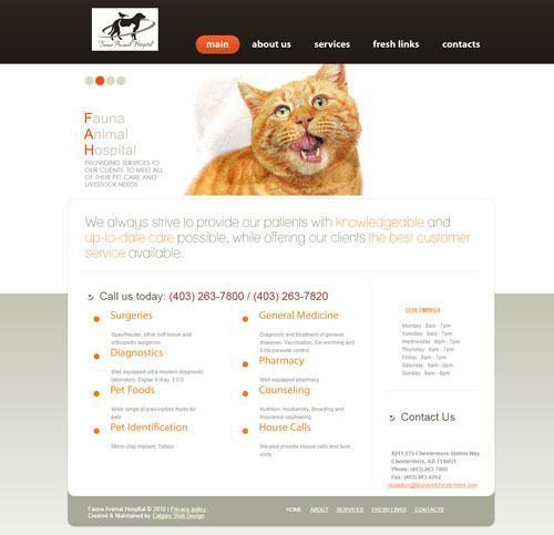 Fauna-Animal-Hospital-Screenshot